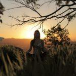 Pranayama | controle a respiração para controlar mente e emoções
